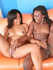 Brown skinned sexpots licking and kissing one another