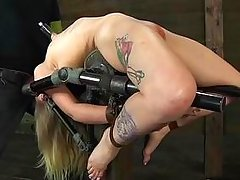 tattooed blonde on a bondage device